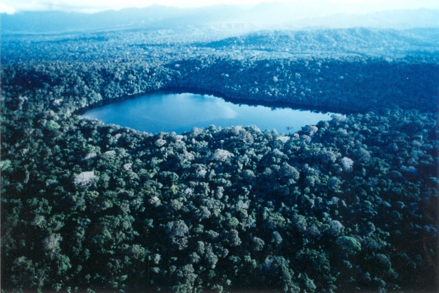 Aerial view of Chalalan lake